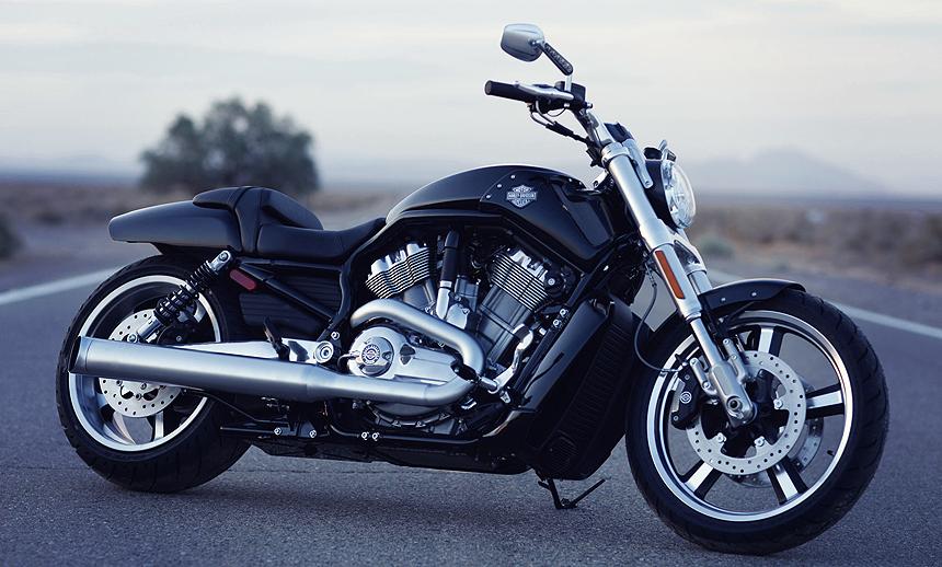 The popular and powerful bike maker, Harley Davidson
